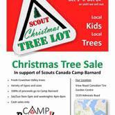 Christmas Tree Sales
