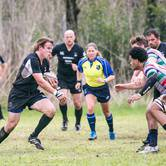 RUGBY: Austin Blacks v HARC