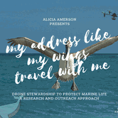 """Alicia Amerson: """"My Address Like My Wings Travel With Me: Drone Stewardship to Protect Marine Life"""""""