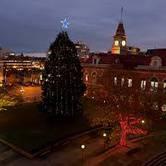 Annual Centennial Square Christmas Tree Light-Up