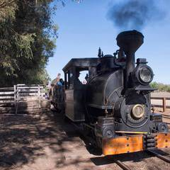 20th Annual Rail Fair