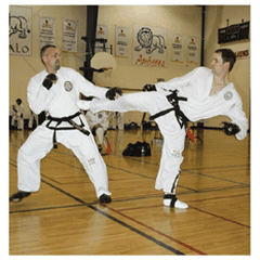Global TaeKwon-Do Martial Arts Inc