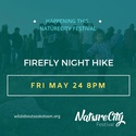 Firefly Night Hike