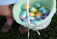 Northern California Eggstravaganza Annual Egg Show and Sale