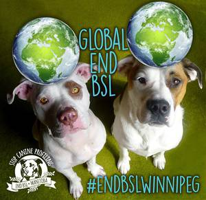 Global Solidarity Dog Walk —TO END BSL