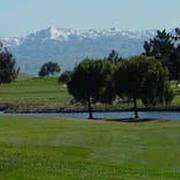 Shoreline Golf Links