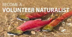 Volunteer Naturalist Training for Cedar River Salmon Journey