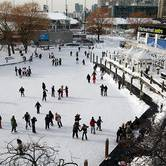The Natrel® Rink at Harbourfront