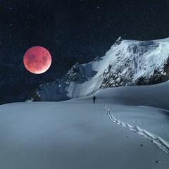 Blood Moon Snowshoe Tour