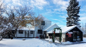 Christmas in the Country Art Sale