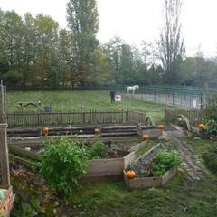 Southlands Farms