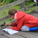 NatureSketch Art & Science Camp