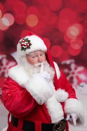 The Christmas Ottawa Craft Show