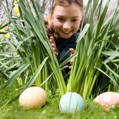 Spring Eggstravaganza Egg Hunt