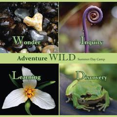 Adventure WILD