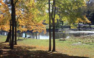 Top Nature Centers and Hiking Trails in Nashville