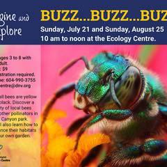 Imagine and Explore Summer Programs - Buzzz
