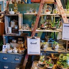 Bring Your Own Glass – Terrarium Workshop