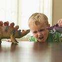 Roaring Dinosaurs (Nov 2019) – TORONTO
