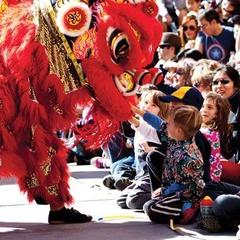 Community Day: Lunar New Year 2019