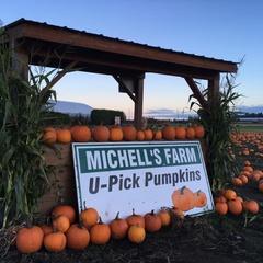 Michell Bros. Farm