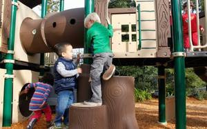 The Best Playgrounds and Parks in Sacramento