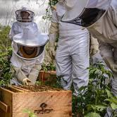 Beekeeping Class at Round Rock Honey