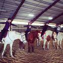 Intro to Horses Day Camp