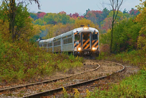 Fall Celebration Train Rides