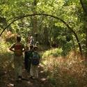 Camp Egret - Heard Summer Nature Camps