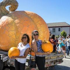 48th Half Moon Bay Art & Pumpkin Festival, Celebrating the Gourd