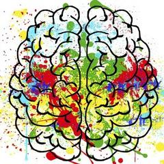 Bray Neuroimaging Lab