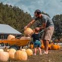 Honeysuckle Hill Farm 2019 Fall Festival!