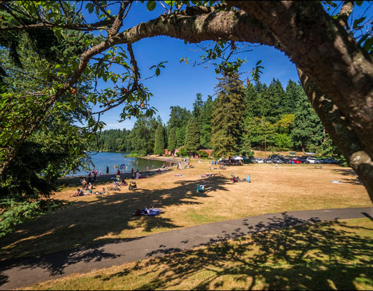 Best Beaches in Seattle