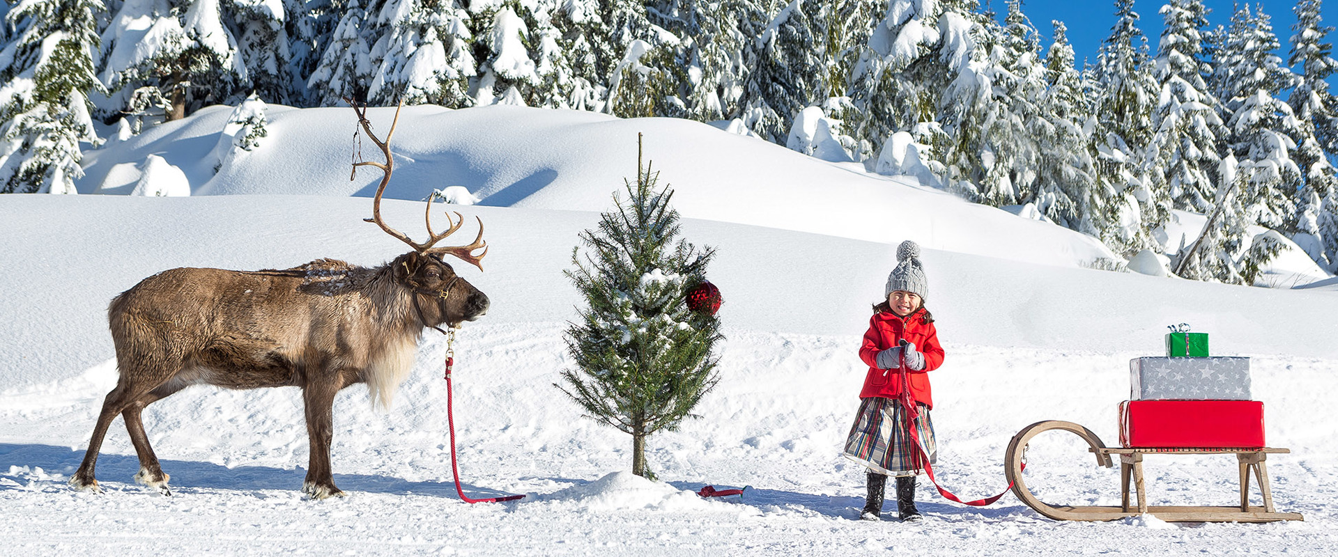 d852dc9ebcd0 Top Christmas Events for Kids in Vancouver