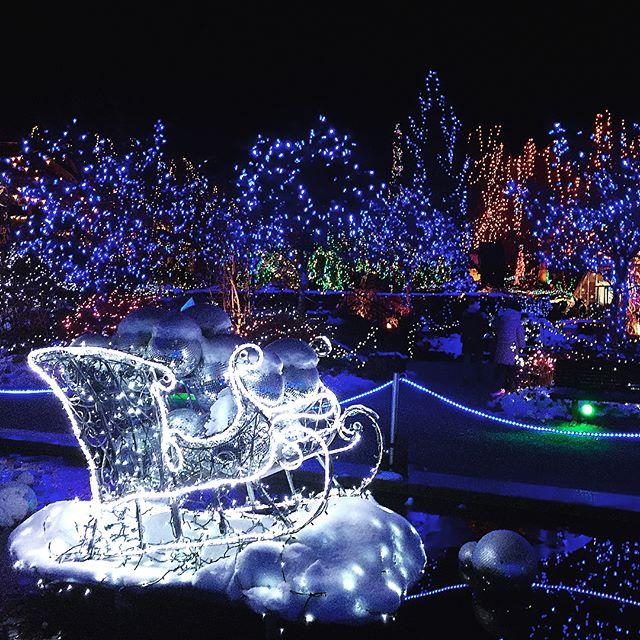 vandusen festival of lights None d45678 - Van Dusen Gardens Christmas Lights 2019